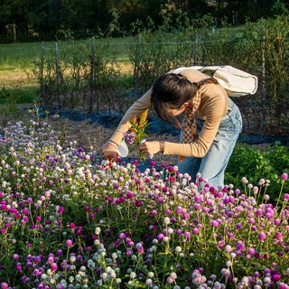 Flowers, food and fun during @bookandplow's annual Farm Fest on Oct. 2....