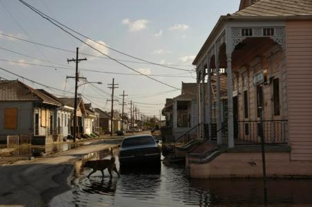 September 14, 2005<br><b>The Bywater district of New Orleans </b><br>The horizontal tableau of entire neighborhoods swamped beneath stinking, sewage-infested waters is as stunning as the vertical drama of the collapsing twin towers in New York. But the relentless focus of the media eye on New Orleans sunken areas and the unprecedented dispersal of its residents obscure the bigger picture: The real issue is not whether to rebuild the Big Easy, but how. Cities are collective works of art, and New Orleans is one of America's masterpieces -- a delectable multicultural gumbo whose value is only more pronounced in a nation where the same stores, banks and malls make every place feel like every other place. For that reason alone, the much-hyped should we rebuild New Orleans? debate is preposterous. Of course we should save New Orleans. To abandon it would be like Italy abandoning Venice. <br><i>Chicago Tribune photo by Chris Walker<br></i>