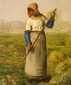 Peasant Woman Raking by François Millet