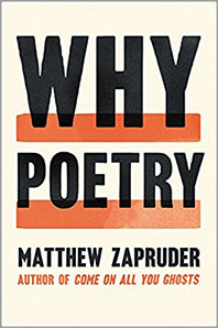 Why Poetry book cover