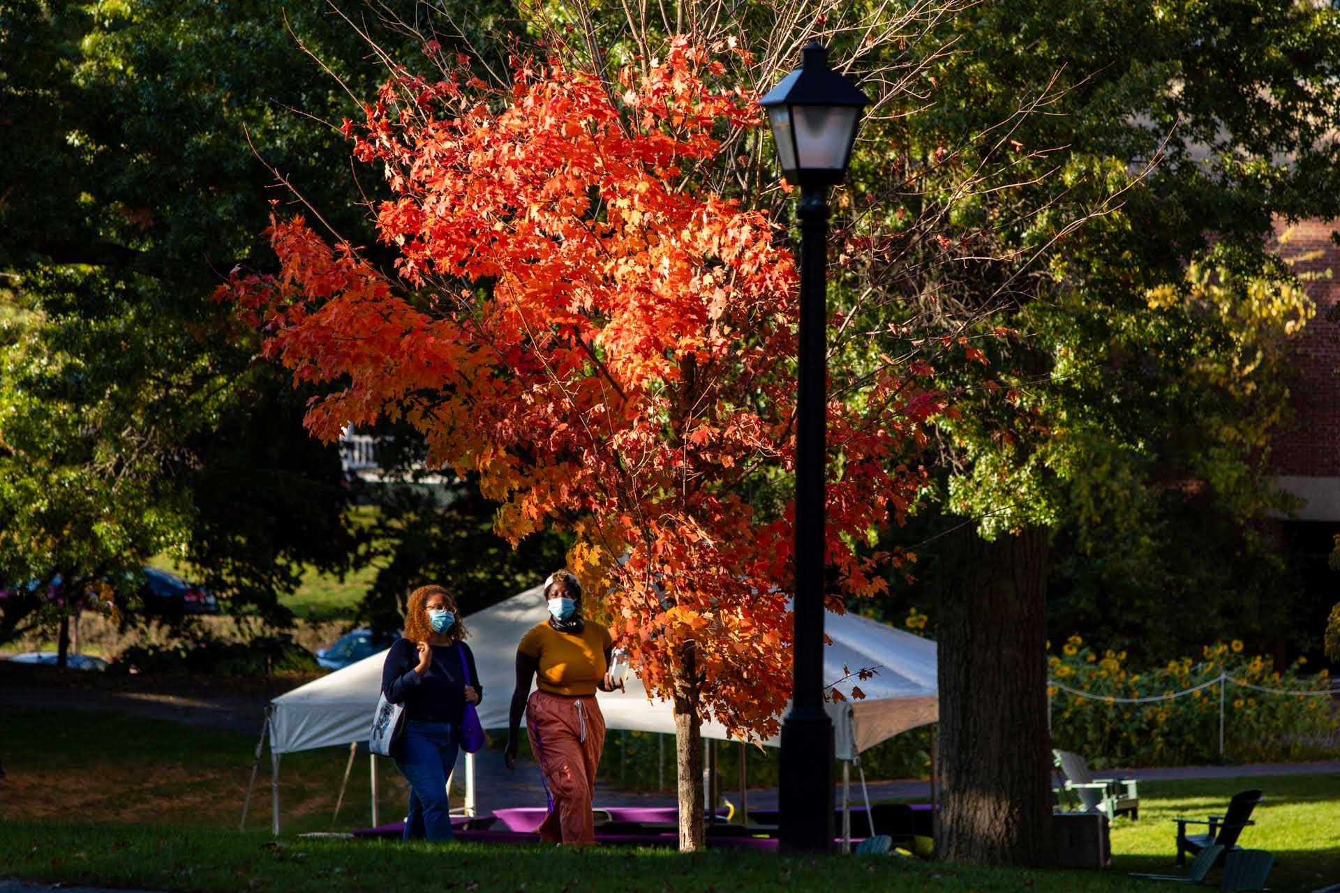 Two students walking on campus on a beautiful fall day
