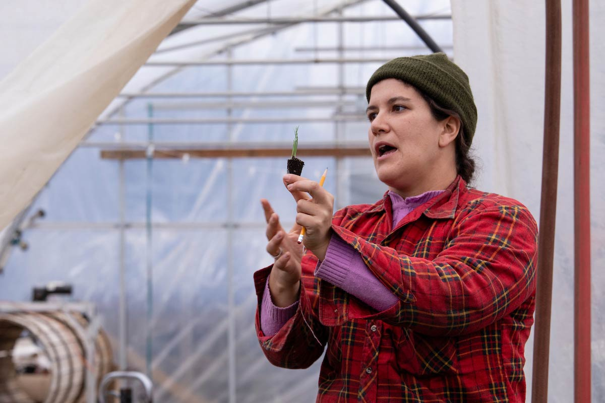 Maida Ives holding up a seedling