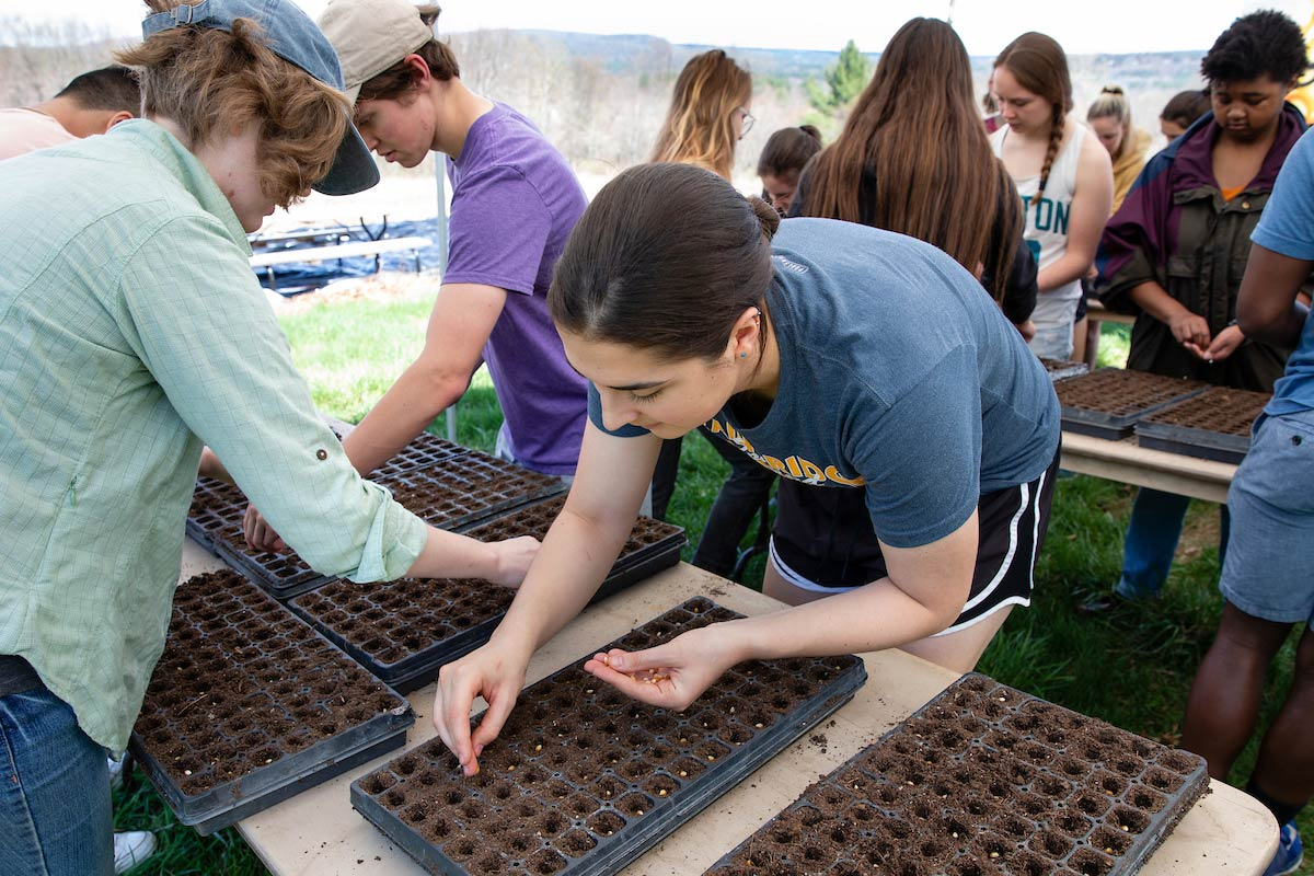 Student planting corn in vegetable flats