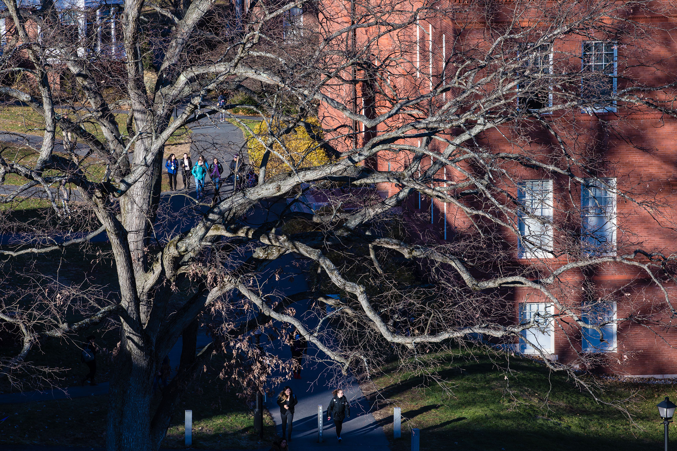 A fall day on the campus of Amherst College.
