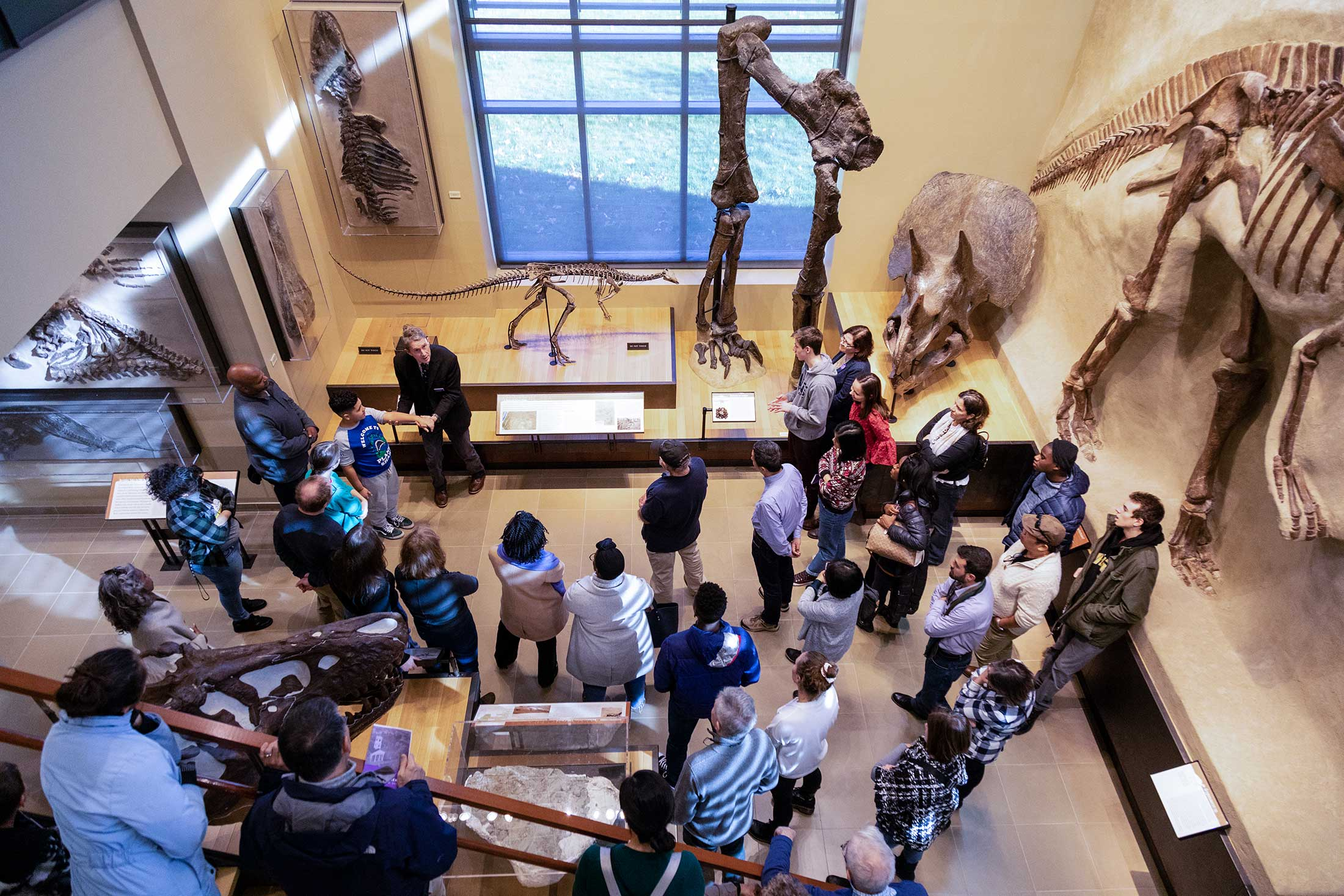 An overhead view of Beneski Museum visitors learning about the dinosaur bones