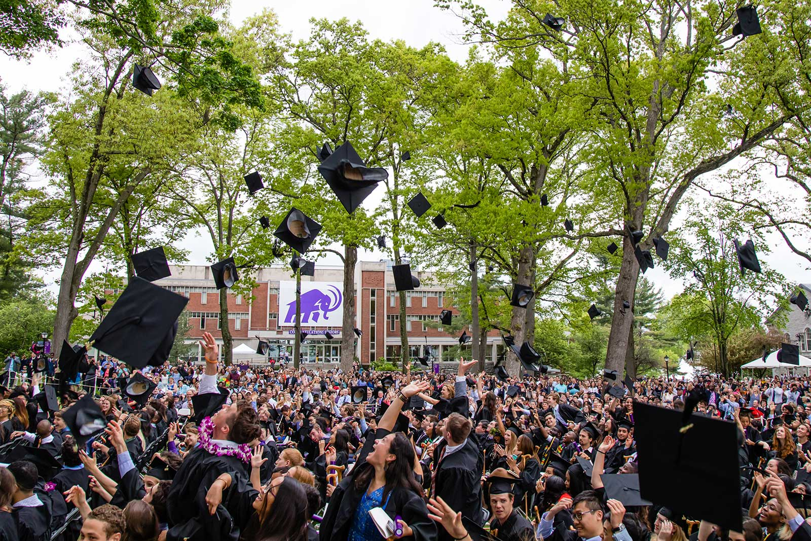 Graduates tossing their caps in the air in celebration