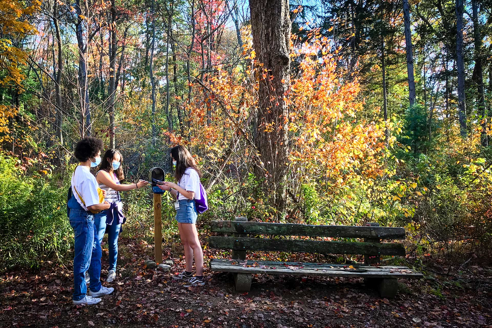 Three students checking the poem filled mailbox on the trail