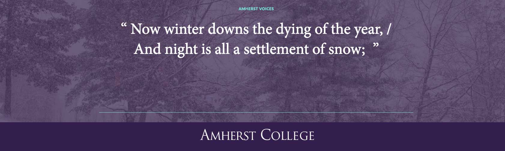 """Now winter downs the dying of the year, / And night is all a settlement of snow;"" by Richard Wilbur"