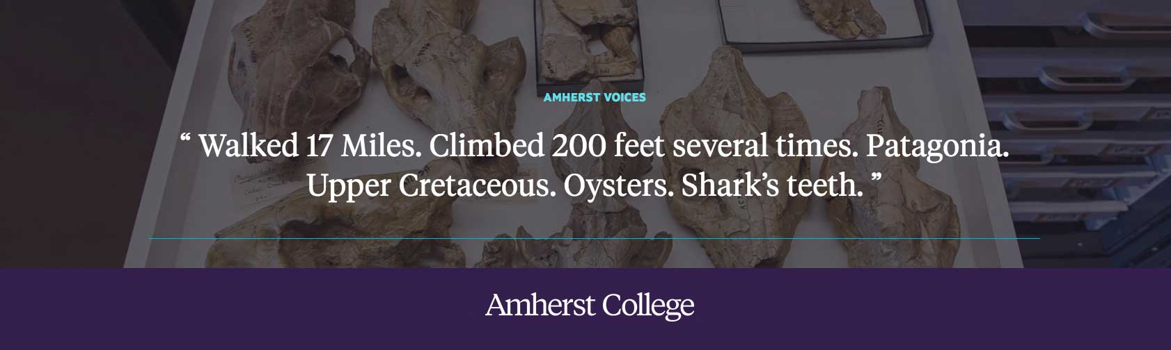 "Quote by Waldo Shumway: ""Walked 17 Miles. Climbed 200 feet several times. Patagonia. Upper Cretaceous. Oysters. Shark's teeth. """
