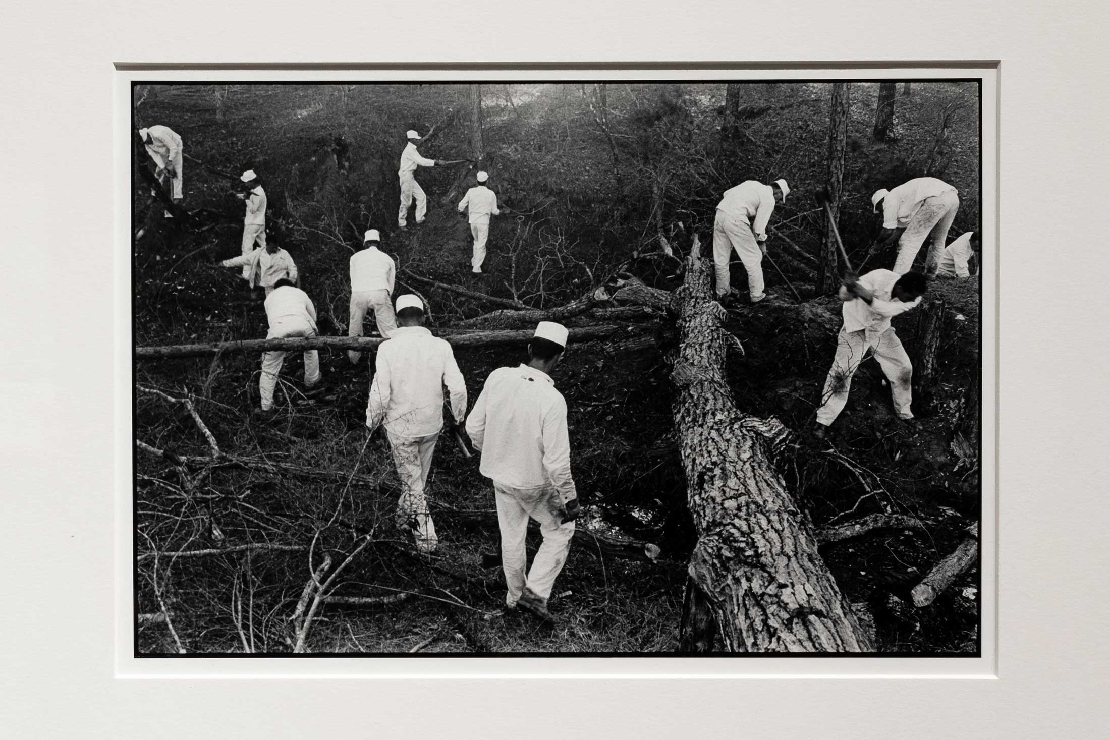 Clearing Land, Conversation with the Dead by Danny Lyon