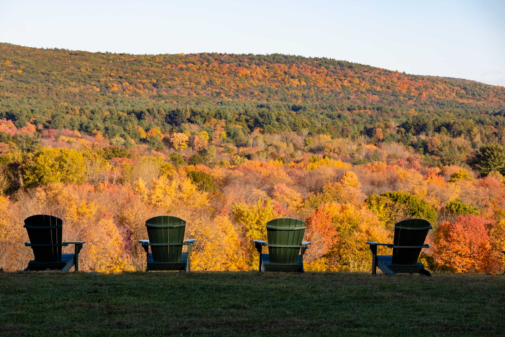 The fall colors are showcased on this view of the mt holyoke range