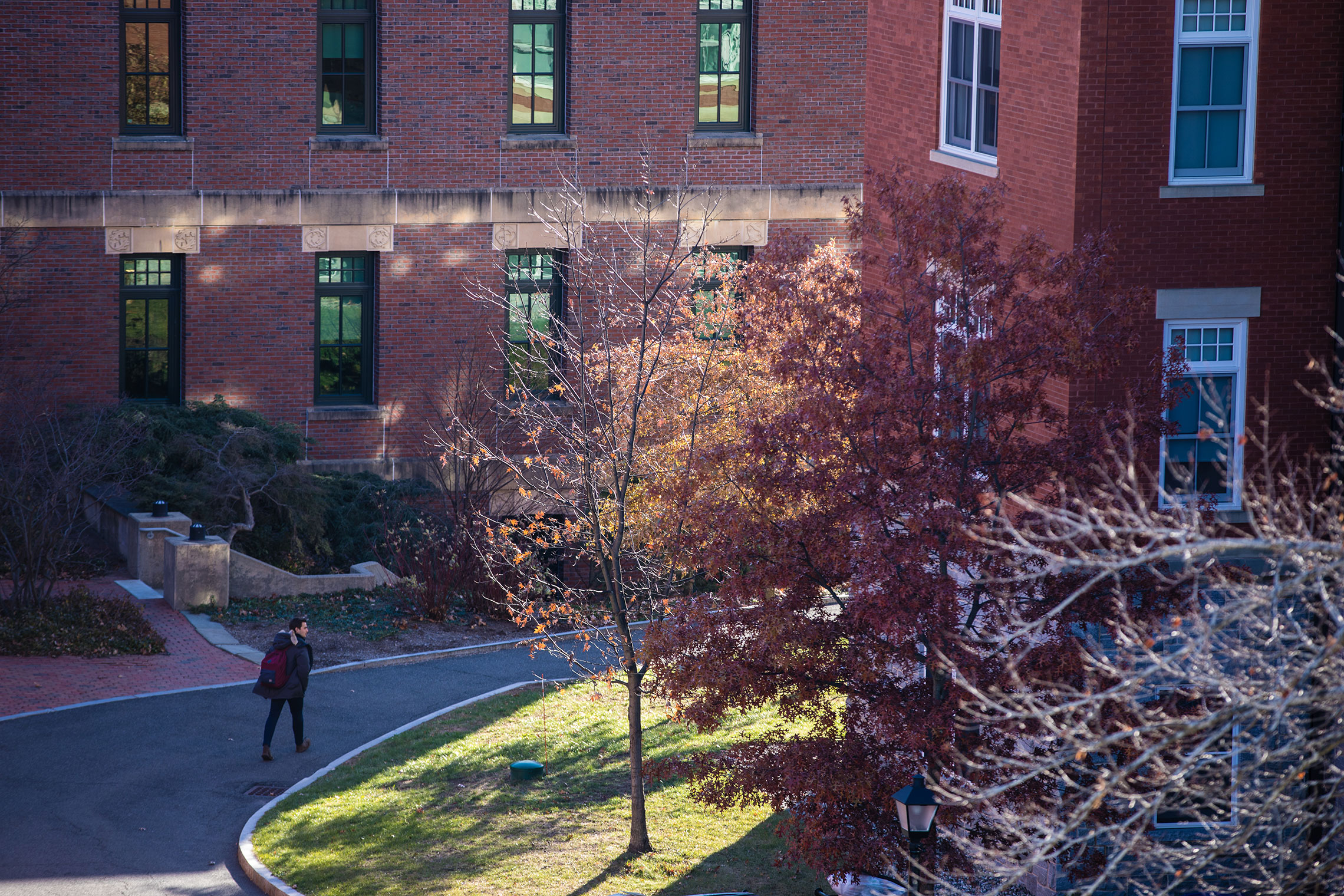 Late afternoon light on the campus of Amherst College.
