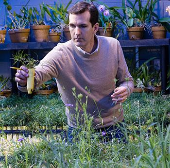 Biology Professor Michael Hood in the greenhouse