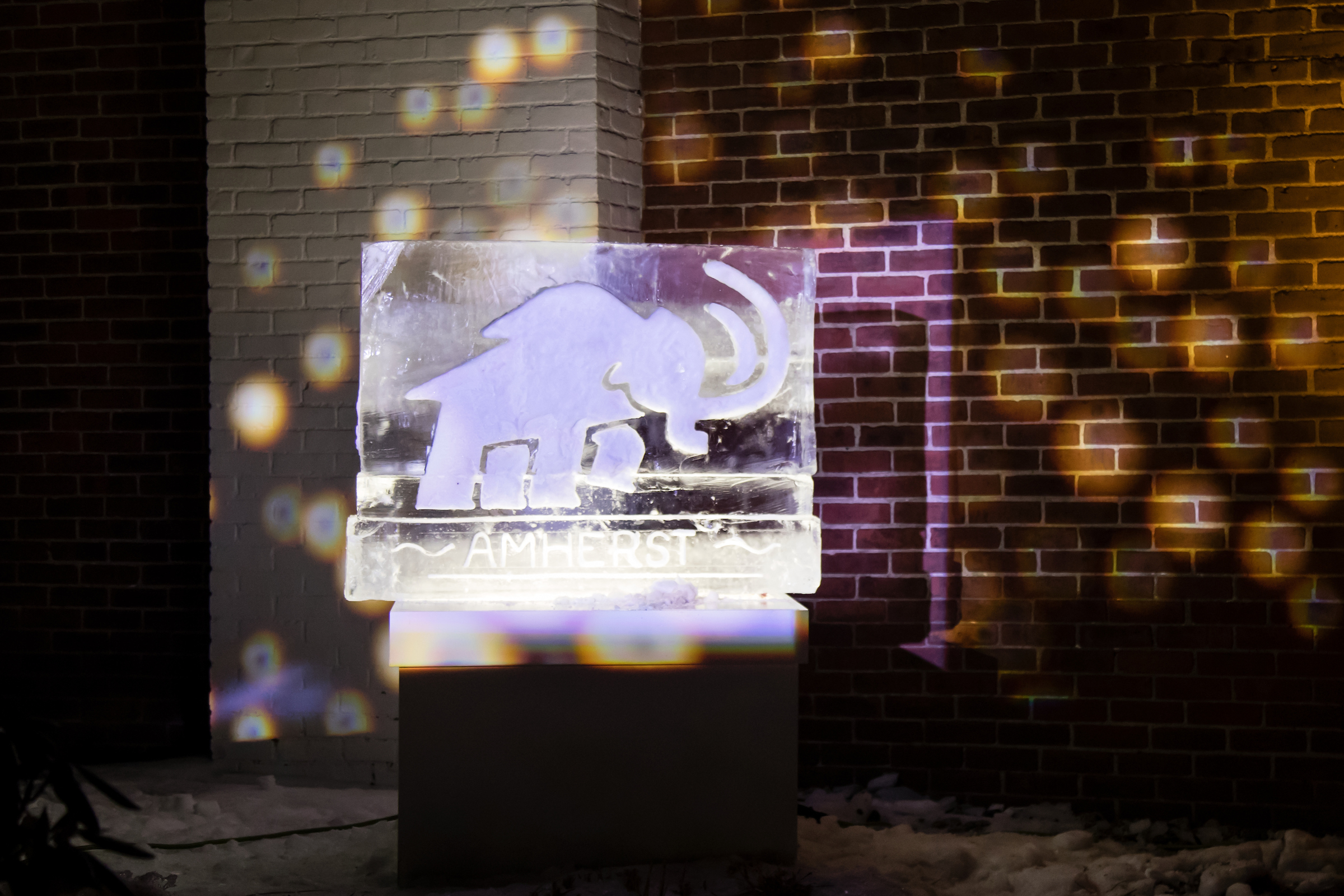 Ice sculpture of the Amherst Mammoth
