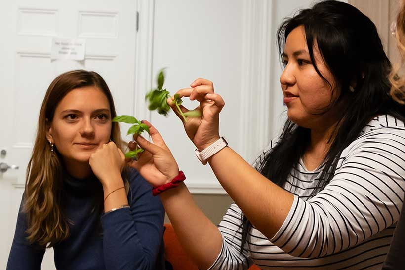 Two women example plant clippings