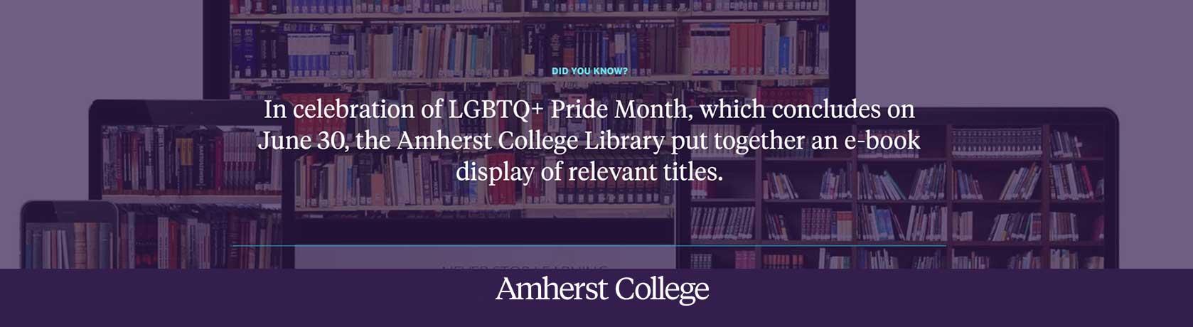 LGBTQ Digital Book Collection