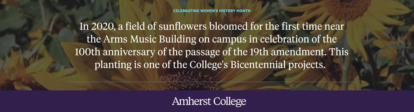 In 2020 a field of sunflowers was planted on campus to celebrate the 100th anniversary of the passage of the 19th amendment