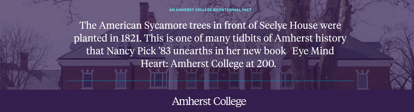 Bicentennial Fact: the Sycamores in front of Seelye House were planted in 1821