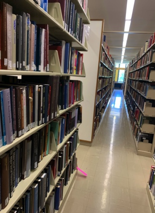 Library stacks and shelves