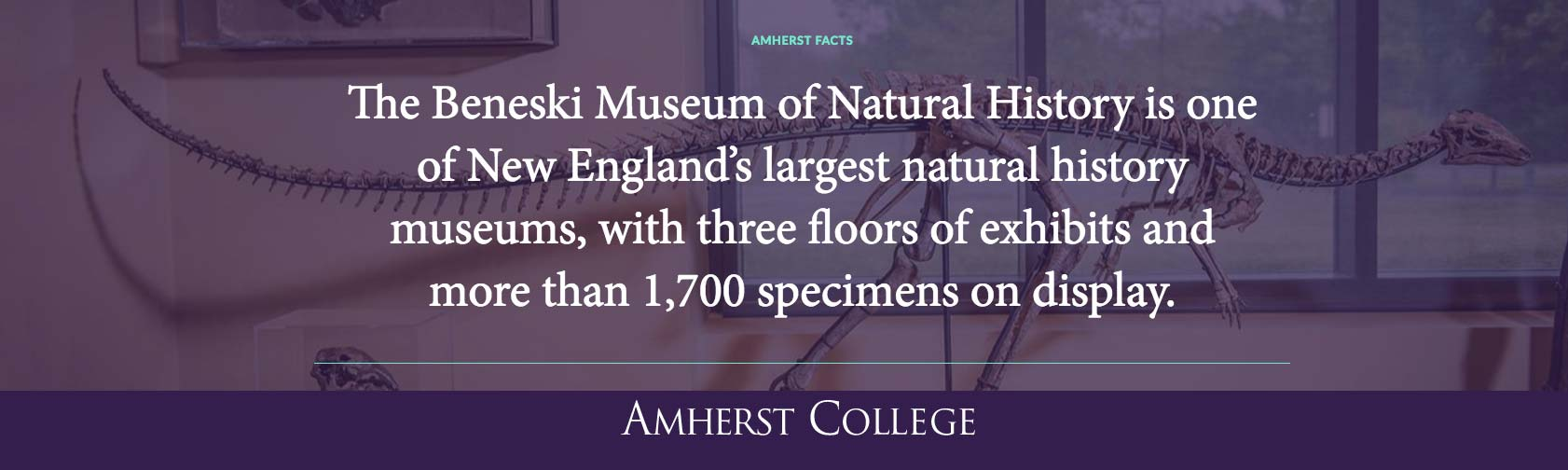 Beneski Museum Fact