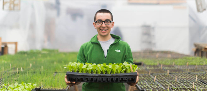 A student holding seedlings in a greenhouse