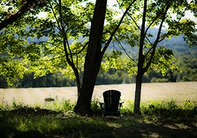Amherst College campus summer photo