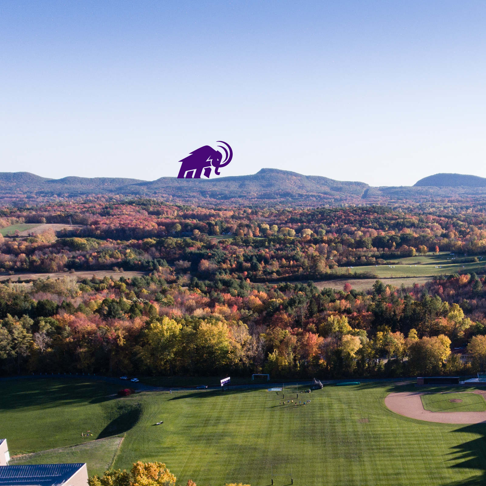Mammoth walking across the range in an aerial photo of campus
