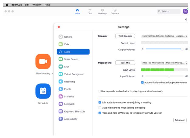 Screenshot of audio settings in Zoom