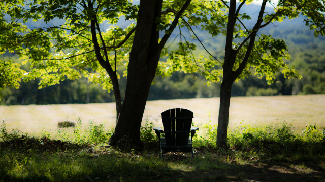 A photo of a chair overlooking a sunlit field