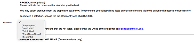 The pronouns section option for ACData