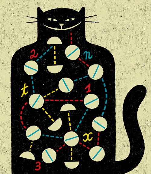 Illustration of cat with mathematical equations in fur