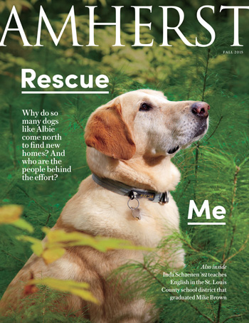 Fall 2015 magazine cover, close up of dog