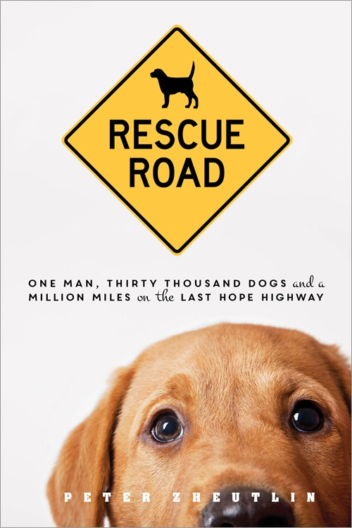 Rescue_Road_Cover.jpg