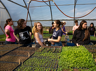 A group of students in a greenhouse examining a large table of seedlings