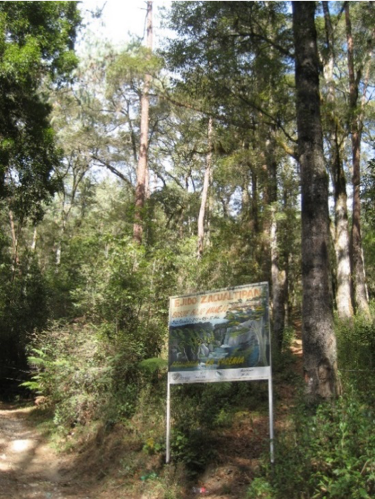 Sign stating that this ejido's forest is under management to protect the watershed