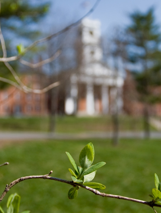 Johnson Chapel viewed through budding spring leaves