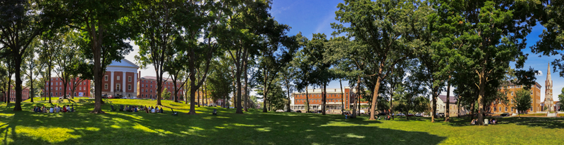 Panorama of the quad.