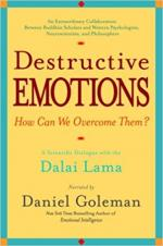 Destructive Emotions: A Scientific Dialogue with the Dalai Lama cover