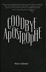 Goodbye, Apostrophe cover