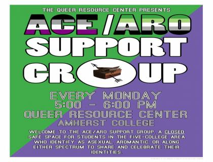 Ace/Aro Support Group