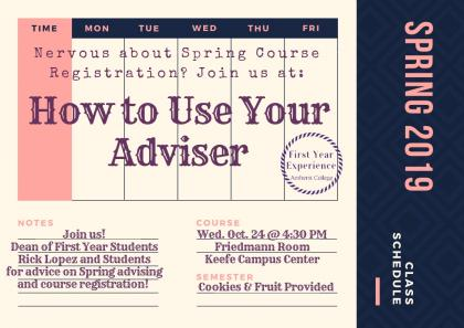 How to Use Your Adviser Poster