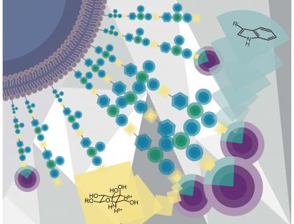 Kiessling Research Image: a colorful, geometrical illustration of molecules