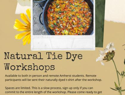 Book and Plow, Student Activities, and Arts at Amherst Present: Natural Tie Dye Workshops. Available to both in person and remote Amherst students. Remote participants will be sent their naturally dyed t-shirt after the workshop.  Spaces are limited. This is a slow process, sign up only if you can commit to the entire length of the workshop. Please come ready to get a little messy! June 25th, 2021 - 4:30 - 5PM  at Book & Plow Farm. Link to sign up in our linktree