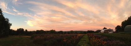 A view from Book & Plow Farm of the Pelham Hills