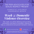 DVAM Week 3: Domestic Violence Overview