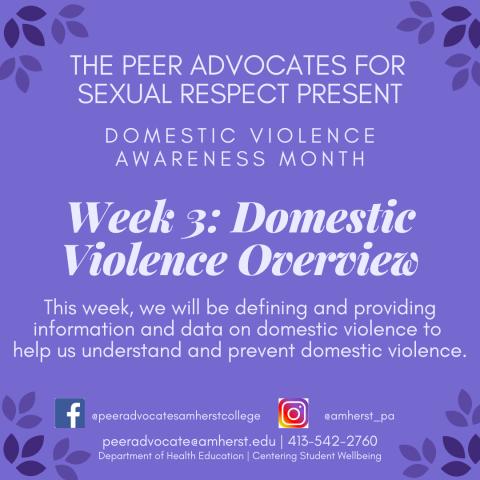 DVAM Week 3: Domestic Violence Overview