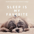 Grey fluffy dog sleeping on a white blanket.  Text in white reads Sleep is my favorite.