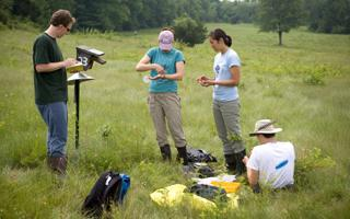 Students in a field conducting research