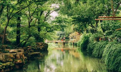 A bridge over a small river in a Japanese garden