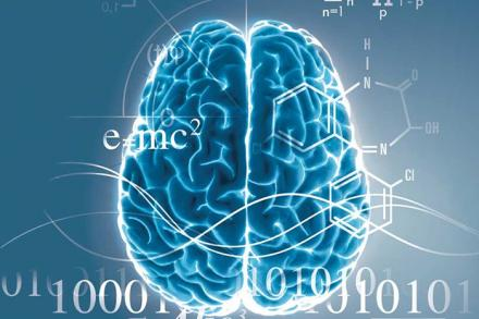 About the neuroscience program